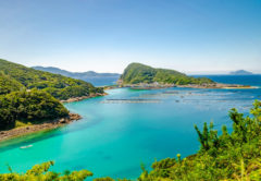 高知「柏島(かしわじま)」のエメラルドグリーンの海を堪能!絶景ドライブへ観光へ!