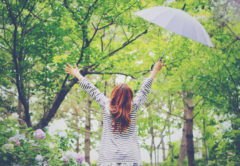 【くせ毛で悩める女子必見】雨の日でも、まとまった髪の毛にする対策法!